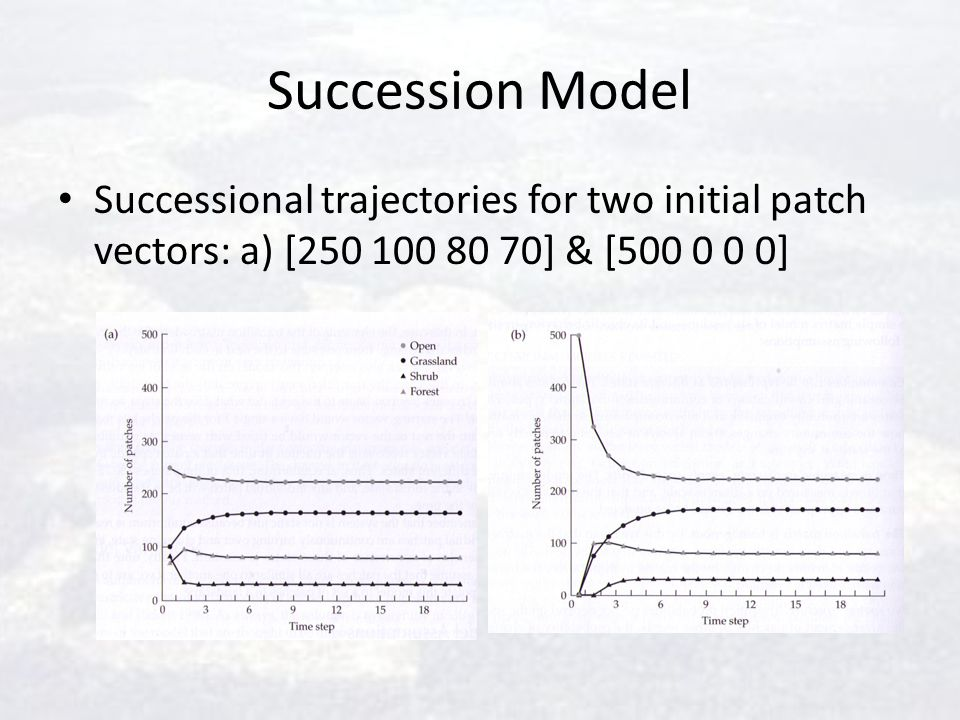 Succession Model Successional trajectories for two initial patch vectors: a) [250 100 80 70] & [500 0 0 0]